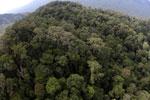 Imbak Canyon -- sabah_aerial_2151