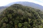 Imbak Canyon -- sabah_aerial_2152