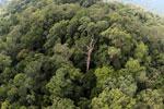 Imbak Canyon -- sabah_aerial_2153