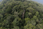 Imbak Canyon -- sabah_aerial_2154