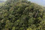 Imbak Canyon -- sabah_aerial_2155