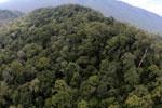 Imbak Canyon -- sabah_aerial_2156