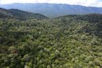 Imbak Canyon -- sabah_aerial_2162