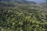Imbak Canyon -- sabah_aerial_2165