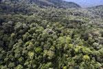Imbak Canyon -- sabah_aerial_2166