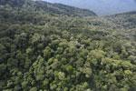 Imbak Canyon -- sabah_aerial_2171
