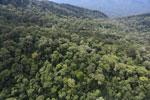 Imbak Canyon -- sabah_aerial_2172