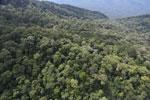 Imbak Canyon -- sabah_aerial_2173