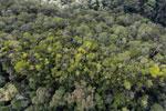 Imbak Canyon -- sabah_aerial_2182