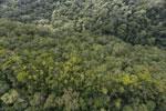 Imbak Canyon -- sabah_aerial_2183