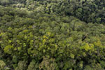 Imbak Canyon -- sabah_aerial_2184