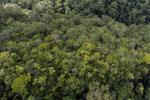 Imbak Canyon -- sabah_aerial_2187