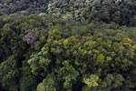 Imbak Canyon -- sabah_aerial_2188