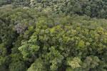 Imbak Canyon -- sabah_aerial_2191