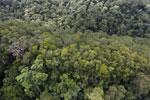 Imbak Canyon -- sabah_aerial_2192