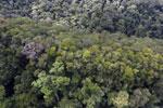 Imbak Canyon -- sabah_aerial_2193