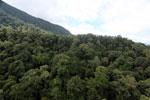 Imbak Canyon -- sabah_aerial_2198