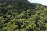 Imbak Canyon -- sabah_aerial_2199