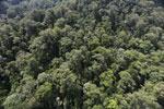 Imbak Canyon -- sabah_aerial_2200