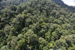 Imbak Canyon -- sabah_aerial_2201