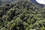 Imbak Canyon -- sabah_aerial_2202