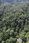 Imbak Canyon -- sabah_aerial_2204
