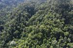 Imbak Canyon -- sabah_aerial_2206