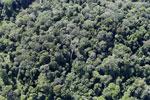 Imbak Canyon -- sabah_aerial_2209