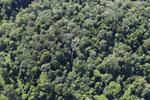 Imbak Canyon -- sabah_aerial_2210