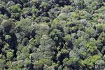 Imbak Canyon -- sabah_aerial_2216
