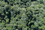Imbak Canyon -- sabah_aerial_2217