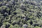 Imbak Canyon -- sabah_aerial_2224