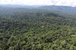 Imbak Canyon -- sabah_aerial_2230