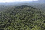 Imbak Canyon -- sabah_aerial_2231