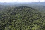 Imbak Canyon -- sabah_aerial_2232
