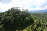 Logging road in Malaysia -- sabah_aerial_2237