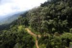 Logging road in Malaysia -- sabah_aerial_2239