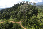Logging road in Malaysia -- sabah_aerial_2241