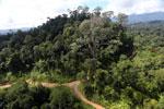 Logging road in Malaysia -- sabah_aerial_2242