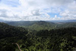 Selectively logged forest in Borneo -- sabah_aerial_2264