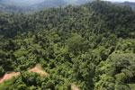 Logging road in Malaysia -- sabah_aerial_2268