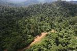 Logging road in Malaysia -- sabah_aerial_2270