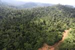 Logging road in Malaysia -- sabah_aerial_2273