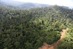 Logging road in Malaysia -- sabah_aerial_2274
