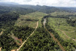 Rainforest converted to oil palm plantations in Borneo -- sabah_aerial_2287