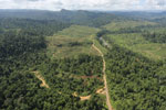 Rainforest converted to oil palm plantations in Borneo -- sabah_aerial_2290