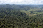 Rainforest converted to oil palm plantations in Borneo -- sabah_aerial_2297