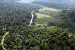 Deforested rainforest valley -- sabah_aerial_2310