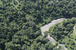 River in Borneo -- sabah_aerial_2315