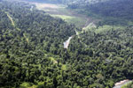 Logged over forest in Borneo -- sabah_aerial_2317